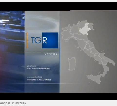 RAI3 TG - 11 settembre 2015